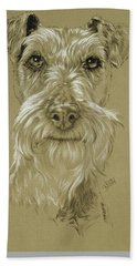 Irish Terrier Beach Sheet