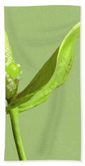 It's A Green Thing Beach Towel