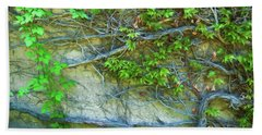 Beach Sheet featuring the photograph Ivy by Trey Foerster
