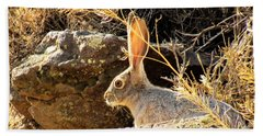 Jack Rabbit Beach Sheet