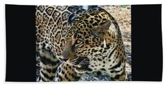 Jaguar # 3 Beach Towel