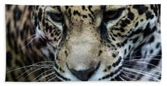 Jaguar Up Close Beach Towel