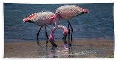 James's Flamingos, Salar De Uyuni, Bolivia Beach Sheet