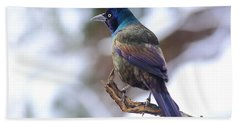 Beach Towel featuring the photograph January Grackle by Daniel Reed
