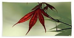 Beach Towel featuring the photograph Japanese Maple Leaf by Ann Lauwers