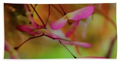 Beach Towel featuring the photograph Japanese Maple Seedlings by Brenda Jacobs