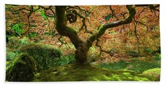 Japanese Maple Tree Bathed In Sunlight Beach Sheet