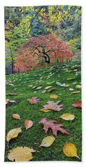 Japanese Maple Tree On A Green Mossy Slope Beach Towel