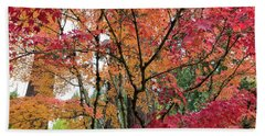 Japanese Maple Trees In Autumn Beach Towel