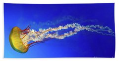 Japanese Sea Nettle Jellyfish Beach Towel