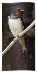 Swallow Beach Sheet