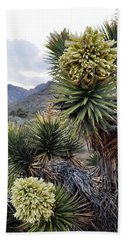 Beach Towel featuring the photograph Joshua Tree Bloom Rainbow Mountain by Kyle Hanson