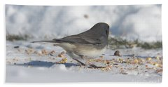 Junco Under Feeder Beach Towel