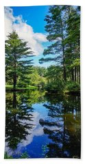 Beach Towel featuring the photograph June Day At The Park by Kendall McKernon