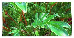 Beach Towel featuring the photograph Jungle Greenery by Ginny Schmidt