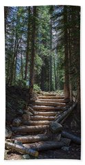 Beach Towel featuring the photograph Just Another Stairway To Heaven by James BO Insogna