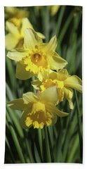 Just Dafs Beach Towel