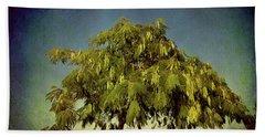 Just One Tree Beach Sheet by Milena Ilieva