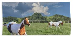 Beach Towel featuring the photograph Just Running by Janette Boyd