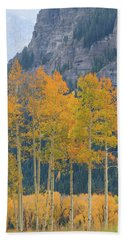 Just The Ten Of Us Beach Towel by David Chandler