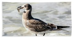 Juvenile Gull With Fish Beach Towel