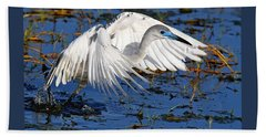 Juvenile Little Blue Heron Beach Towel