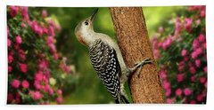 Beach Towel featuring the photograph Juvenile Red Bellied Woodpecker by Darren Fisher