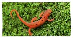 Juvenile Red-eft Green Moss North Carolina Beach Sheet by Mark VanDyke