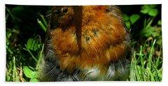 Juvenile Robin 2 Beach Sheet