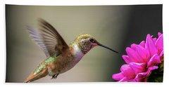 Juvenile Rufous Hummingbird And Pink Dahlia Beach Towel