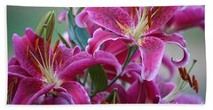 K And D Lilly 4 Beach Towel