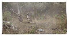 Kangaroos In The Mist Beach Towel