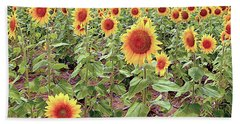 Kansas Sunflower Field Beach Towel