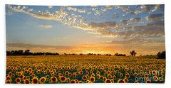 Kansas Sunflowers At Sunset Beach Sheet