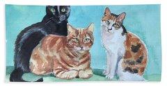 Kates's Cats Beach Sheet