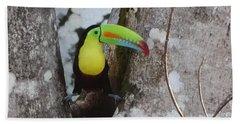 Keel-billed Toucan #2 Beach Sheet