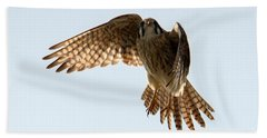 Beach Towel featuring the photograph Kestrel Hover by Mike Dawson