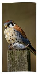 Kestrel With Prey Beach Towel