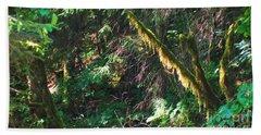 Ketchikan Green Beach Sheet