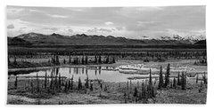 Kettle Pond And The Alaska Range Beach Sheet