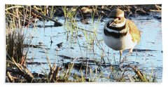 Killdeer Beach Towel