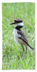 Killdeer Chick 3825 Beach Towel