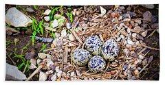 Killdeer Nest Beach Towel by Cricket Hackmann