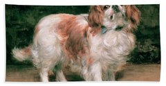 King Charles Spaniel Beach Towel by George Sheridan Knowles