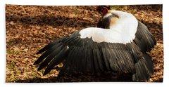 King Vulture 2 Strutting Beach Sheet by Chris Flees