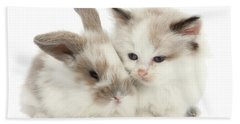 Kitten Cute Beach Sheet
