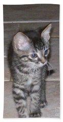 Martius Kitten Beach Sheet