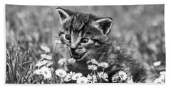 Kitten With Daisy's Beach Sheet