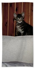 Beach Towel featuring the photograph Kitty by Laura Melis