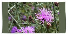 Beach Sheet featuring the photograph Knapweed by Danielle R T Haney